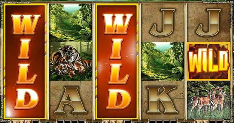 A Guide to Wild Symbols